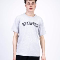 CHAMPION T-SHIRT GREY