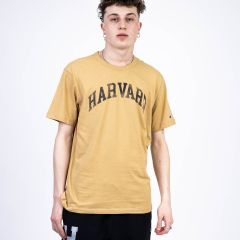 CHAMPION T-SHIRT BEIGE